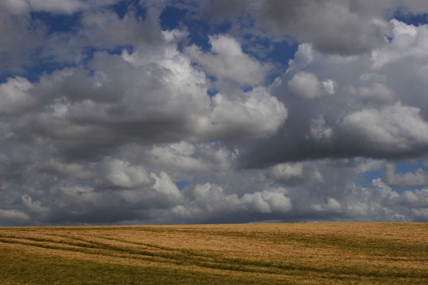 Clouds over Fields 09 Agricultural Land Beauty In Nature Blue Sky Cloud - Sky Cumulus Cloud Day Dramatic Sky Farmland Landscape Landscape_Collection Nature No People Non Urban Scene Oxfordshire UK Rural Scene Scenics Sky Sky And Clouds The Cotswolds Weather