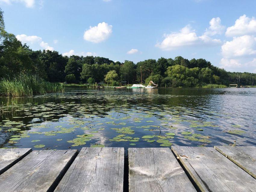 Lake Water Naturelovers Summertime EyeEmNewHere Sommergefühle