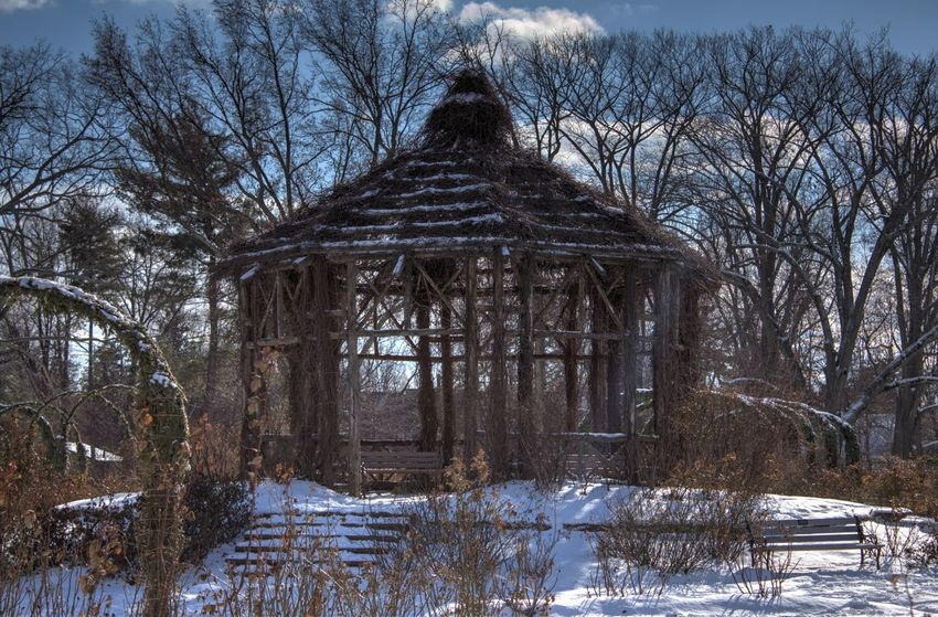 EyeEm Nature Lover Gazebo At The Park Winter Snow Cold Temperature Tree Day Low Angle View Architecture Outdoors Built Structure Nature