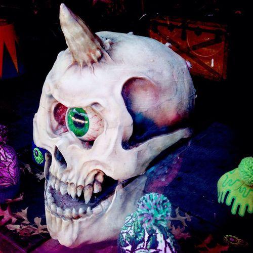 Skull Skulldiggery Window Shopping