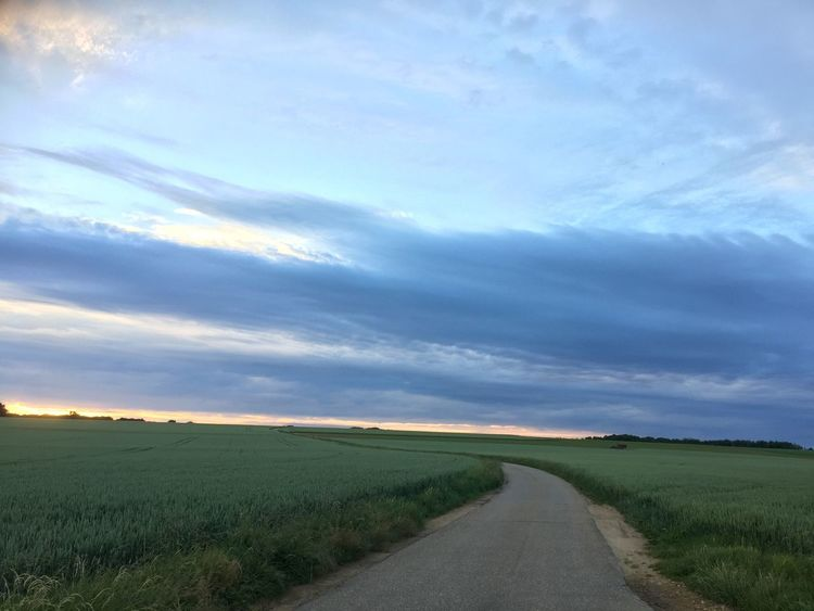 Landscape_Collection Landscape_photography Landscape Photography Fieldscape Fields And Sky Fields Photography Fields Himmel Und Wolken Himmel Himmelskunst Without Filters Without Filter Ohne Filter Sans Filtre