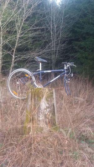 hometrainer Bike Hometrainer Fahrrad No People Outdoors Pattern Day Backgrounds Nature
