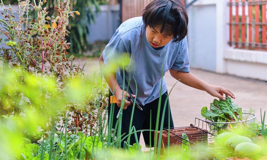 Full length of boy eating food on plant
