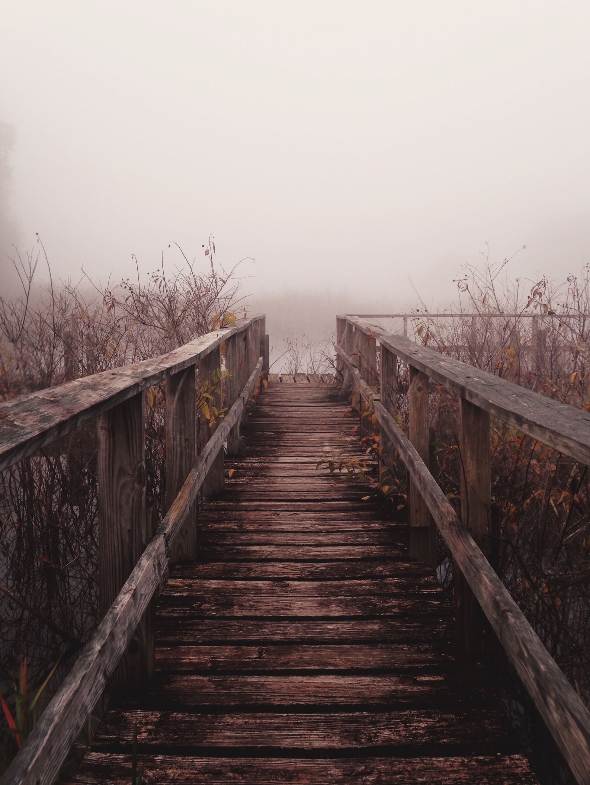 the way forward, wood - material, railing, sky, diminishing perspective, boardwalk, pier, tranquility, built structure, wooden, footbridge, nature, tranquil scene, water, connection, clear sky, wood, vanishing point, fence, outdoors