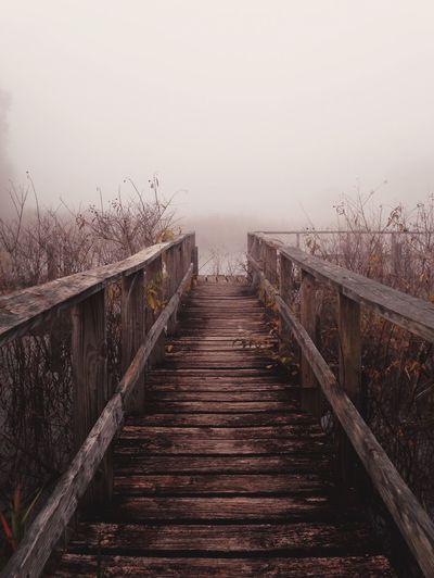 Forgotten beauty. Melancholic Landscapes Huffington Post Stories AMPt - Abandon Abandoned_florida