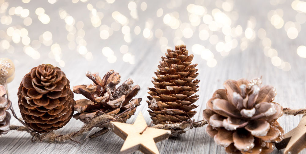 Advent Celebration Christmas Christmas Decoration Christmas Ornament Close-up Coniferous Tree Decoration Focus On Foreground Food Food And Drink Holiday Indoors  Nature No People Pine Cone Shape Star Shape Still Life Sweet Food Table Tree
