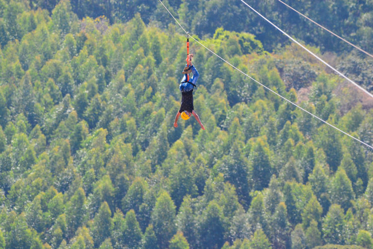 Man Doing Zip Lining Against Trees