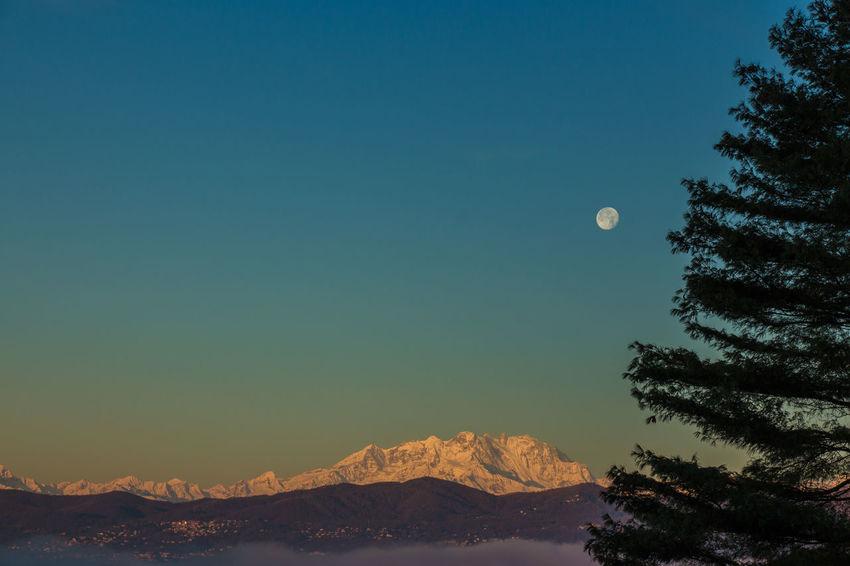 Alba Alps Beauty In Nature Dawn Landscape Luna Monte Monte Rosa Moon Mountain Nature Rosa Sky Skyporn Tree Landscapes