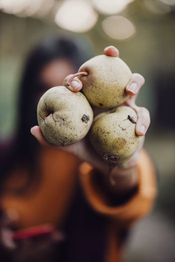 Cropped hand of woman holding fruit