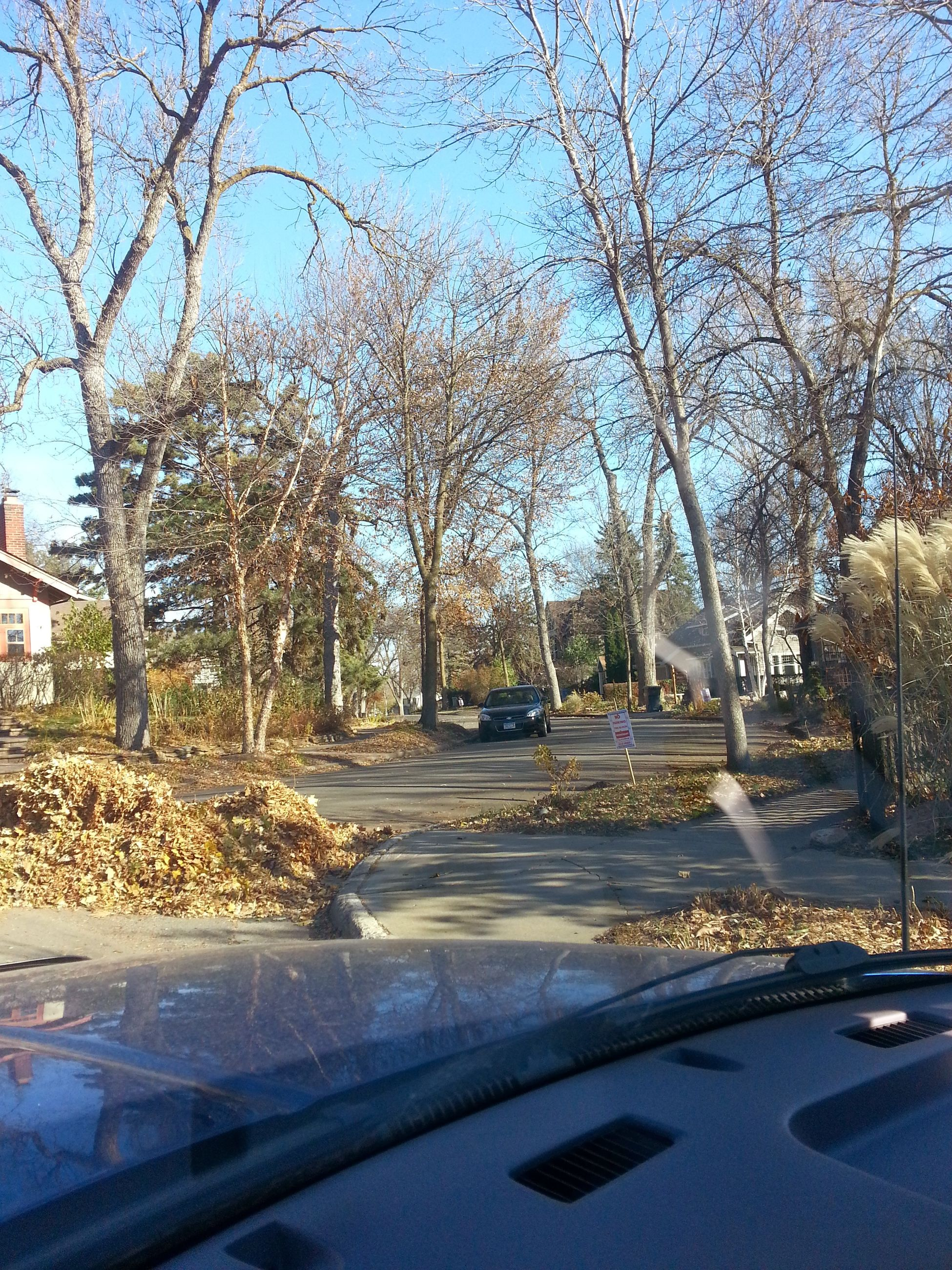 tree, transportation, road, branch, clear sky, car, built structure, sunlight, street, building exterior, bare tree, blue, architecture, growth, day, shadow, nature, sky, city, outdoors