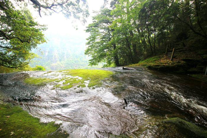 top of a waterfall on Sunday Taiwan Waterfall Shimenggu 石梦谷 瀑布
