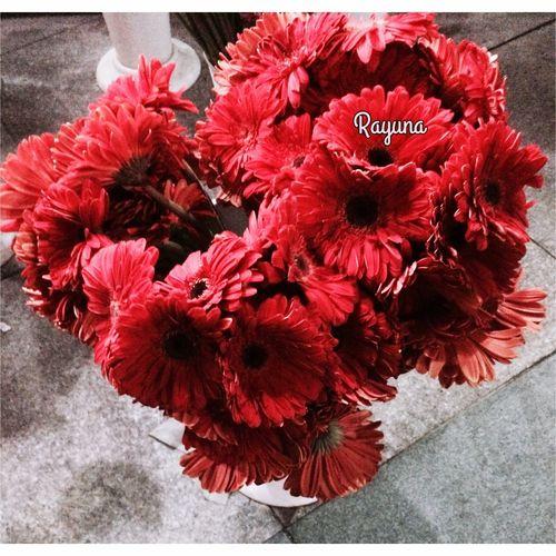 By me 📷 OpenEdit Istanbul Urban 4 Filter Under Pressure Rosé Roses Rose♥