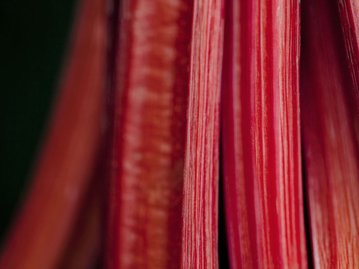 Extreme close-up of rhubarb