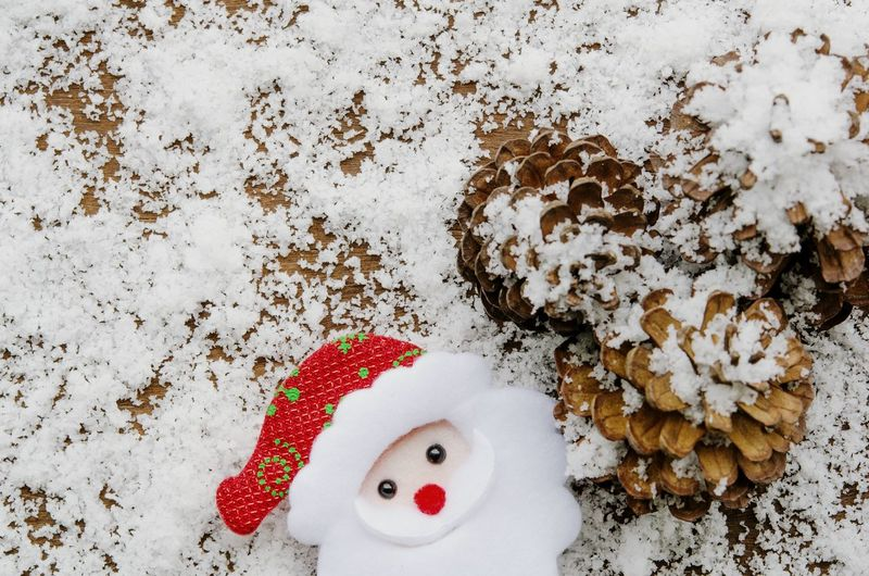 High angle view of stuffed toy on snow