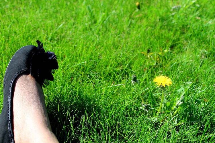 My Lonely Day!!! Close To Nature Summertime Hanging Out Taking Photos Shoes