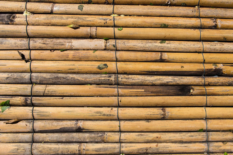 Bamboo pile texture background Pile Of Wood Architecture Backgrounds Bamboo Bamboo - Material Brown Built Structure Close-up Day Full Frame In A Row Large Group Of Objects No People Outdoors Pattern Pile Repetition Side By Side Textured  Wall - Building Feature Wood Wood - Material