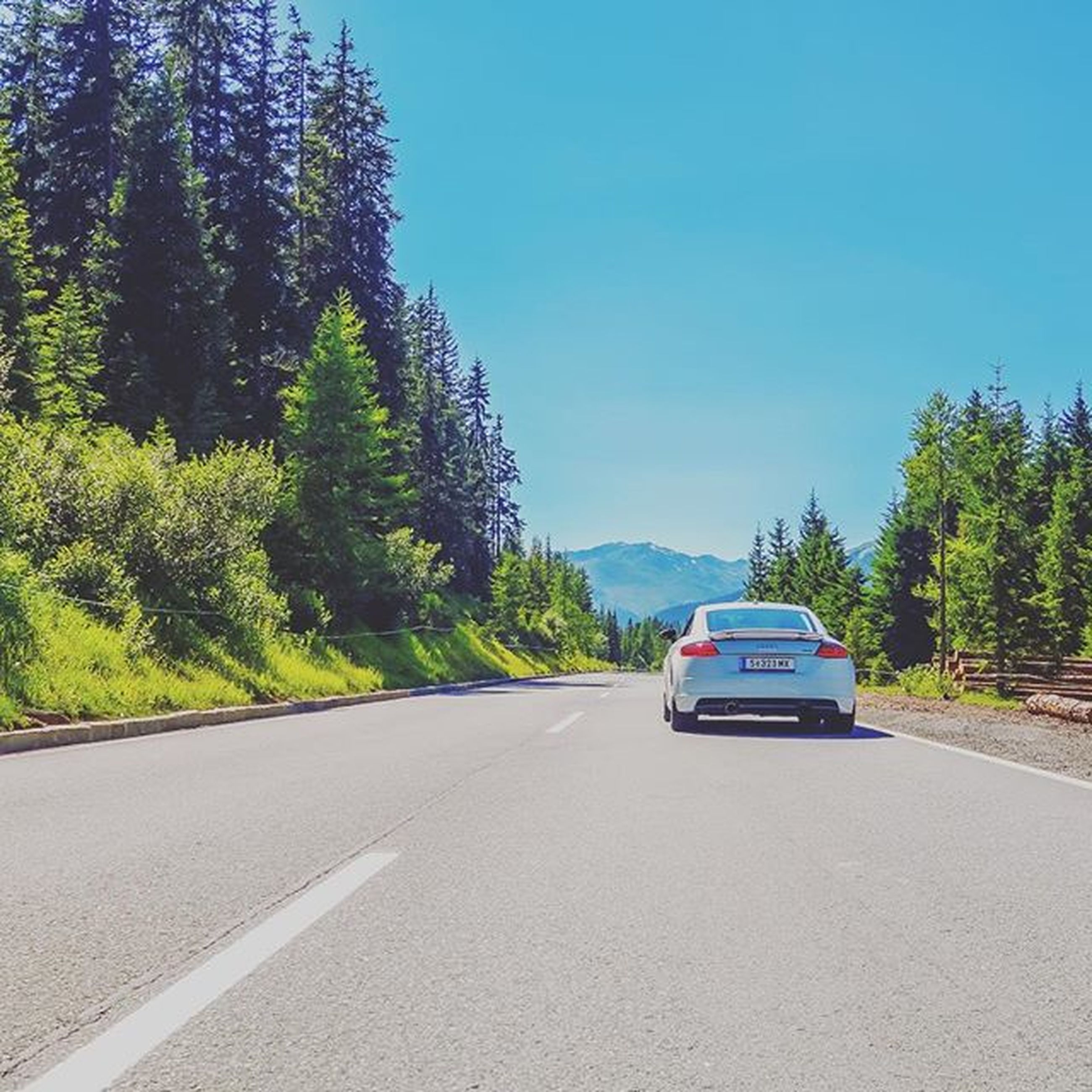 transportation, road, clear sky, car, land vehicle, tree, mode of transport, road marking, the way forward, street, blue, copy space, country road, on the move, diminishing perspective, asphalt, sky, travel, day, sunlight
