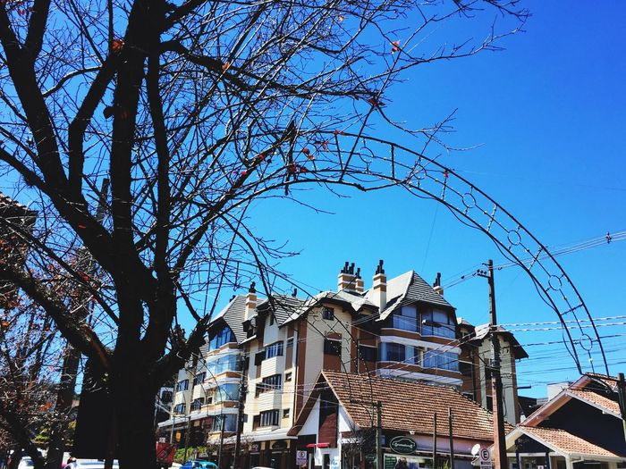 Street Gramado Tourist Pic Photo Day BrazilBuilding Exterior Sky Branch