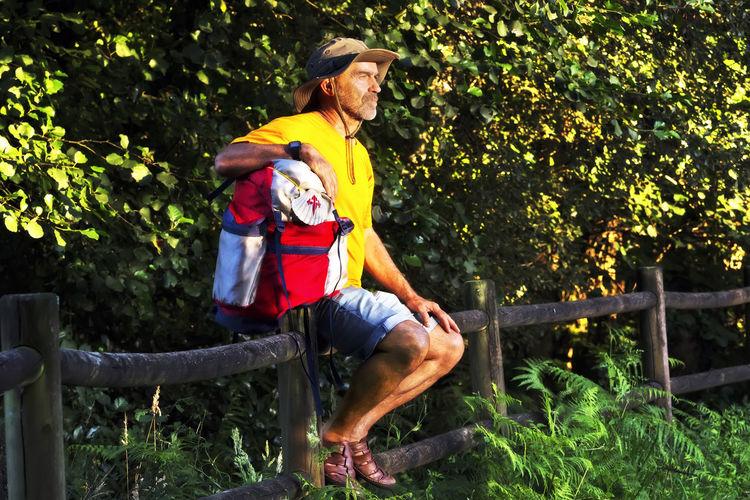 Man Sitting On Railing Against Trees