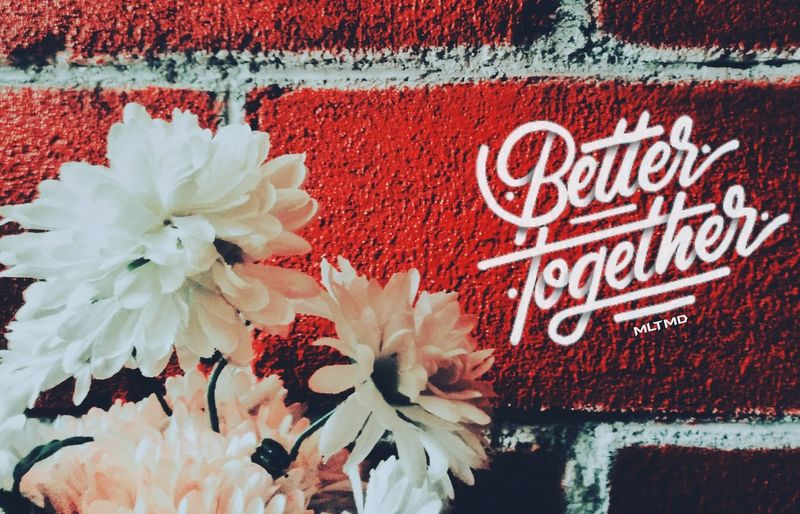 Better Together. Red Flower No People Day Text Outdoors Close-up Nature Fragility Beauty In Nature First Eyeem Photo