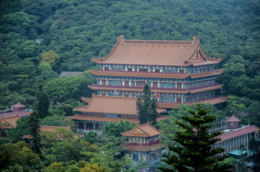 Architecture Hong Kong Monastery Nature Ngong Ping 360 Outdoors Po Lin Monastery Tourist Attraction