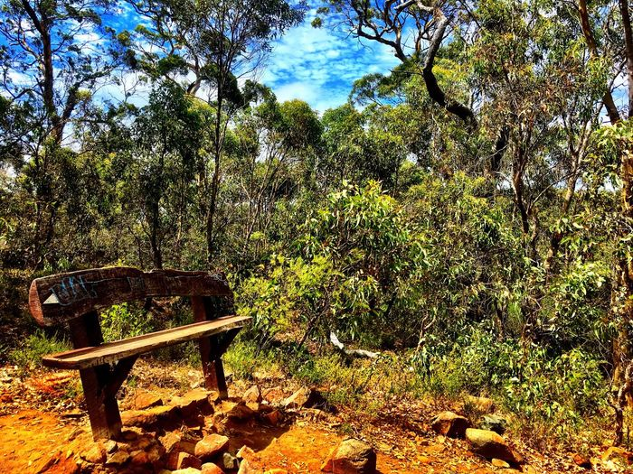 Beauty In Nature Tranquility Sunlight Nature Up In The Hills Contemplating Rest Bushland Landscape Western Australia Cloud - Sky Tranquility Bench Park Bench