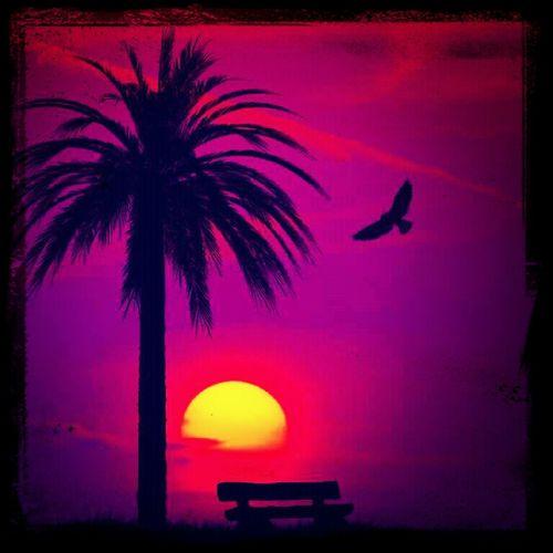 Sunset:)