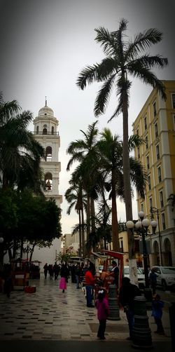Veracruz Mexique Petits Metiers