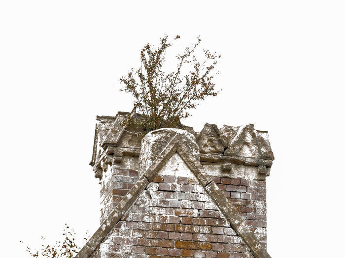 chimney Architecture Art And Craft Belief Building Exterior Built Structure Clear Sky Copy Space Creativity Day History Low Angle View Nature No People Outdoors Plant Religion Sculpture Sky The Past Tree