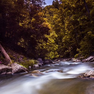 Down river - at the base of webster's falls at spencer gorge in Burlington Ontario Landscape Long Exposure Jasoncrockettphotography Nature Water Riverscape River