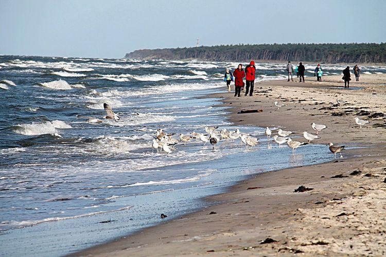 Beachtime Beach View Beachphotography Beach Walk Beach Time Beach Life Beach Photography BEACH!  Sea Sky Sand Feel Free Weather Water Ozean Photography Feeling Moments Of Life Nature Photography Nature_collection Feelinggood Moments Beach Nature Outdoors