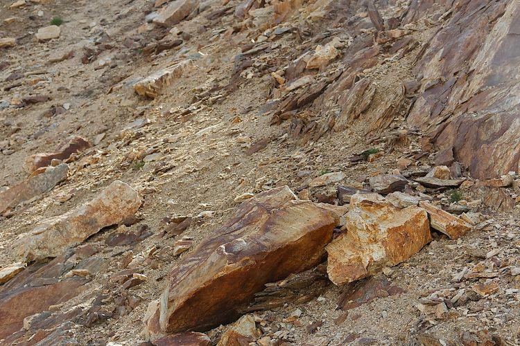 Full frame shot of rocky land