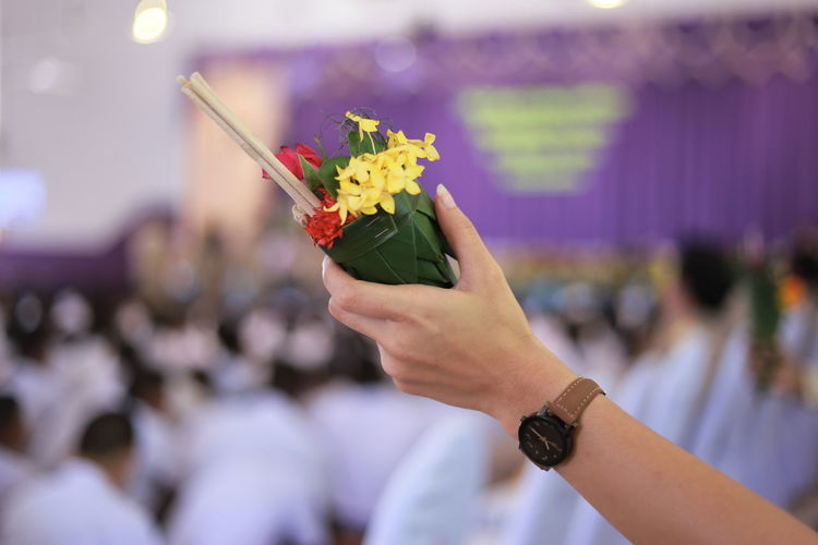 Close-up of hand holding flowers and leaves