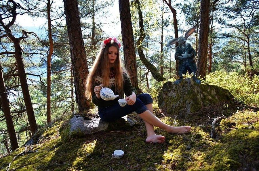My rabbit wants some tea Aliceinwonderland Bunny  Teaparty Photography