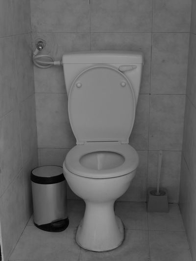Bathroom Toilet Toilet Bowl Domestic Bathroom Convenience Home Hygiene Indoors  Domestic Room No People Flushing Toilet Household Fixture Urgency Seat White Color Toilet Paper