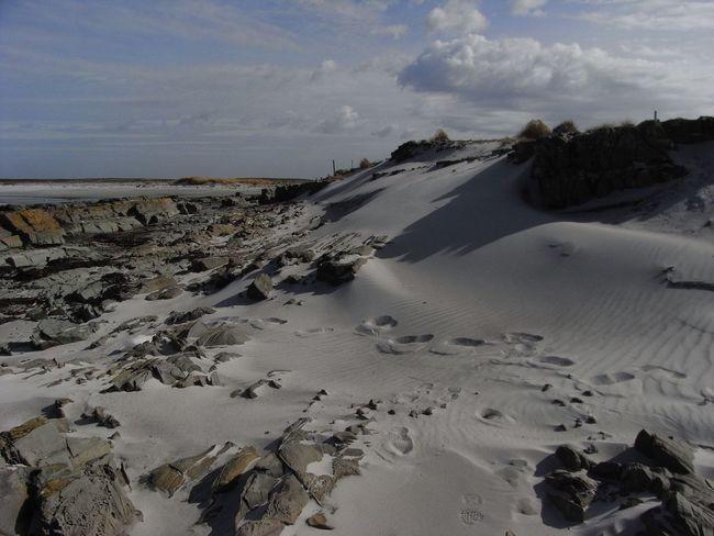 Berthas Beach - Falklands Falkland Islands