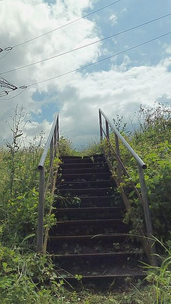 Cloud - Sky Stairs Stairs To Heaven Stairs_collection Streetphotography Outdoor Green