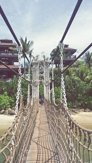HangingBridge Singapore Island Beach Palm Trees Asian Culture Lake Landscape Sand EyeEm Best Shots Photographic Memory Eyemgallery Eyemphotography Photo By Me Summertime Palawan Beach Eye4photography  Check This Out Hot Day Sunnyday☀️ My Own Photography EyeEmBestPics Vacation2015 Clean Photo Sentosa Island
