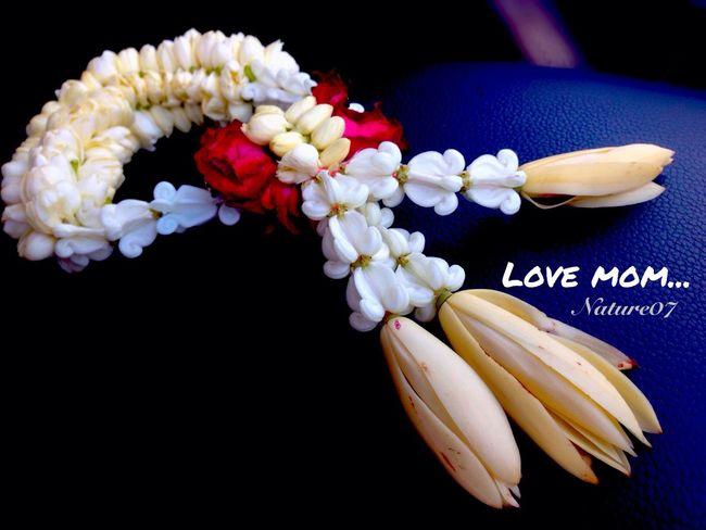 Love mom... ในวันที่..คิดถึง.. Mother's Day. Love_mom Flower_for_u MissU♡ Lovemom