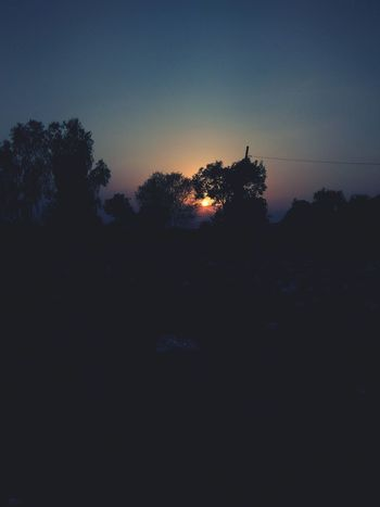 Sunset to exposure. Silhouette Night Tree Sunset Nature Beauty In Nature Tree Area Landscape No People Outdoors Sky Animals In The Wild Bird Astronomy