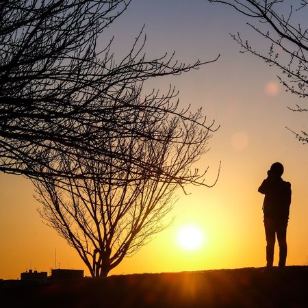 Sunset photographer Photographer Park Sky Sunset Silhouette Real People Orange Color Standing Plant Tree Scenics - Nature Tranquil Scene