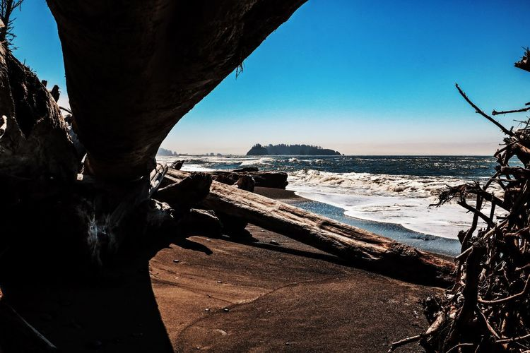 Water Sea Nature Sky No People Land Beach Beauty In Nature Scenics - Nature Driftwood Tranquility Clear Sky Outdoors Rialto Beach, Forks, WA USA Rialto Beach Olympic National Park