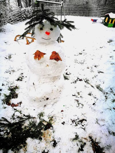 snowwife Snowman Abstract Human Body Part Outdoors