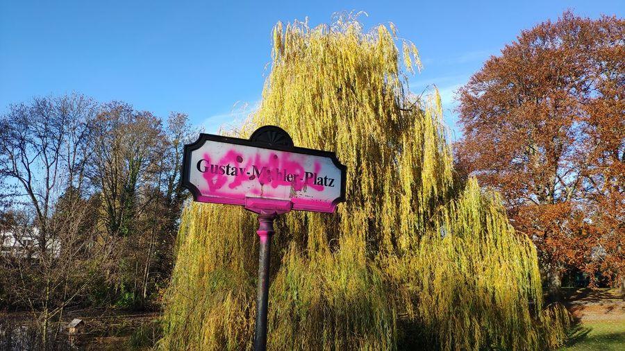 Tree Road Sign