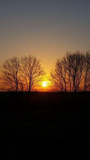 So schön 👌😙 No People No Filter Spazieren Und Fotografieren Daswasichsehe😊 Moments Sun Trees Nordsee Nordseeküste Northsea Nordsee Feeling🐚🌾 Wenn Du Etwas Nicht Magst, ändere Es! Happy Day 😊💝😏 Have A Great Day ♪♫ 🍀🍀🍀☘️☘️☘️ 🌳🌿☘🍃 😁😁😁✌️✌️✌️ 🌅 Sunset 🌅 Beautiful 🌄sunshine🌄 😊😊😊 Smile
