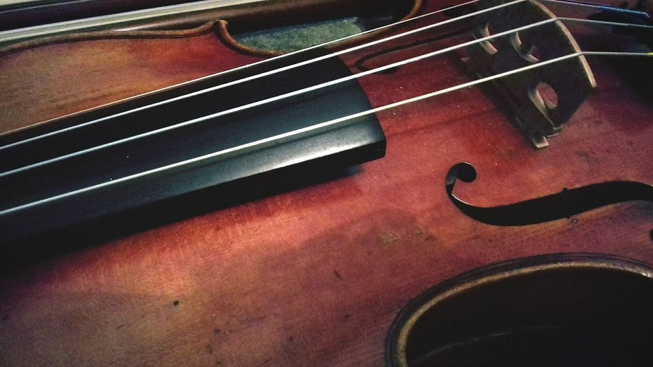 Music Musical Instrument Musical Instrument String Arts Culture And Entertainment String Instrument Violin Close-up Musical Equipment Classical Music