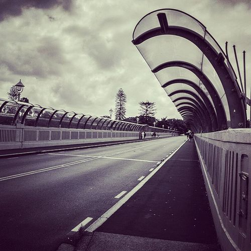 Grafton Bridge Black and White Auckland Curves Road Bridge