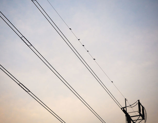 Silhouetted sunset power lines with birds Cross Grid Industrial Lines Post Transmission Backgrounds Birds Cable Connection Electricity  Energy Low Angle View Network No People Outdoors Parallel Power Line  Power Supply Separated Sky Technology Telephone Line Voltage Wire