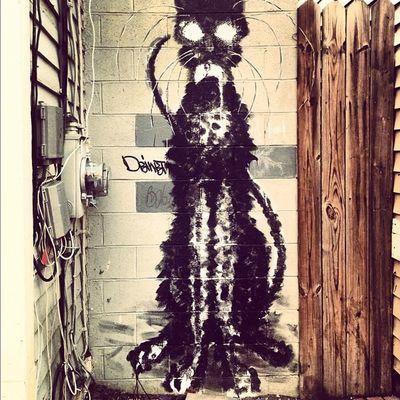 Graffiti Newpz Newpaltz Town cat mouse instagood instalove iphoneonly