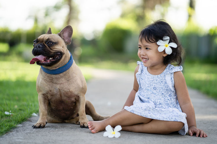 Cute french bulldog sitting with girl at park.